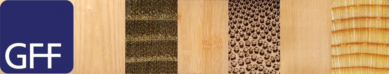 GFF-Holzwirtschaft